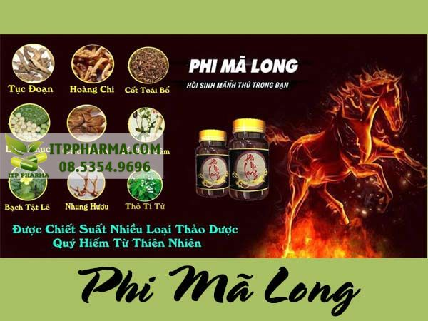 Phi Mã Long