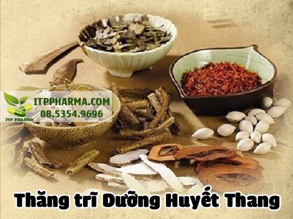 Thuốc điều trị bệnh trĩ Thăng Trĩ Dưỡng Huyết Thang