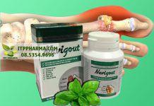 Viên uống Navigout dành cho người bệnh gout