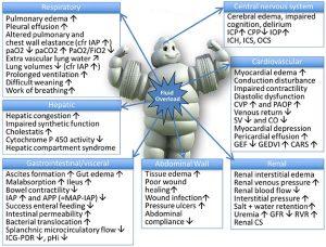 Hình 2 Hậu quả tiềm tàng của quá tải dịch truyền trên chức năng cơ quan cuối.