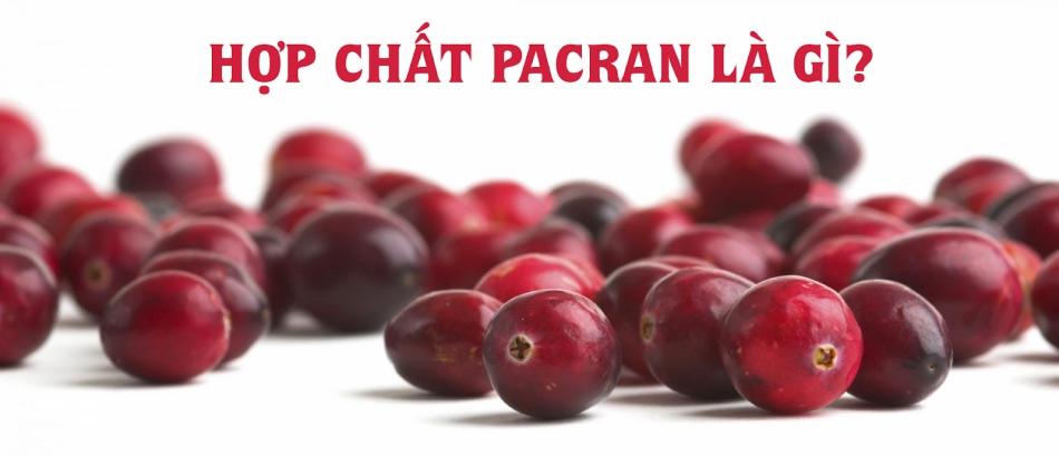 Hợp chất Pacran là gì?