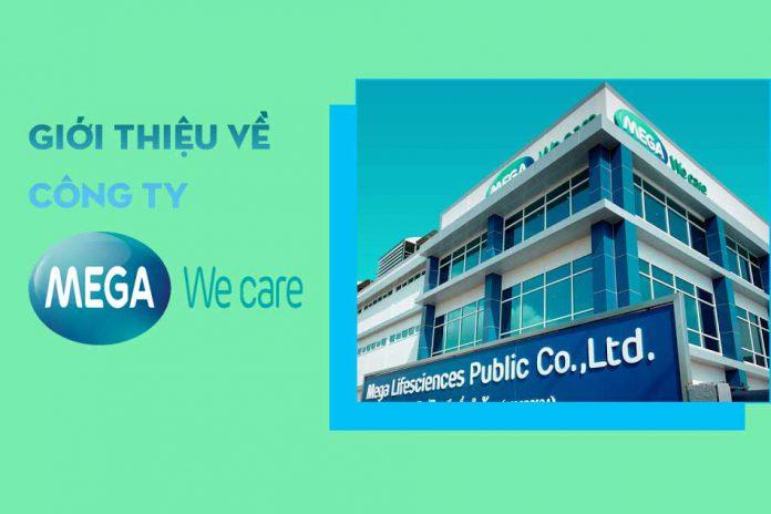 Công ty Mega We care