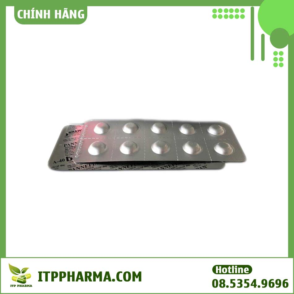 Thuốc Pannefia - 40