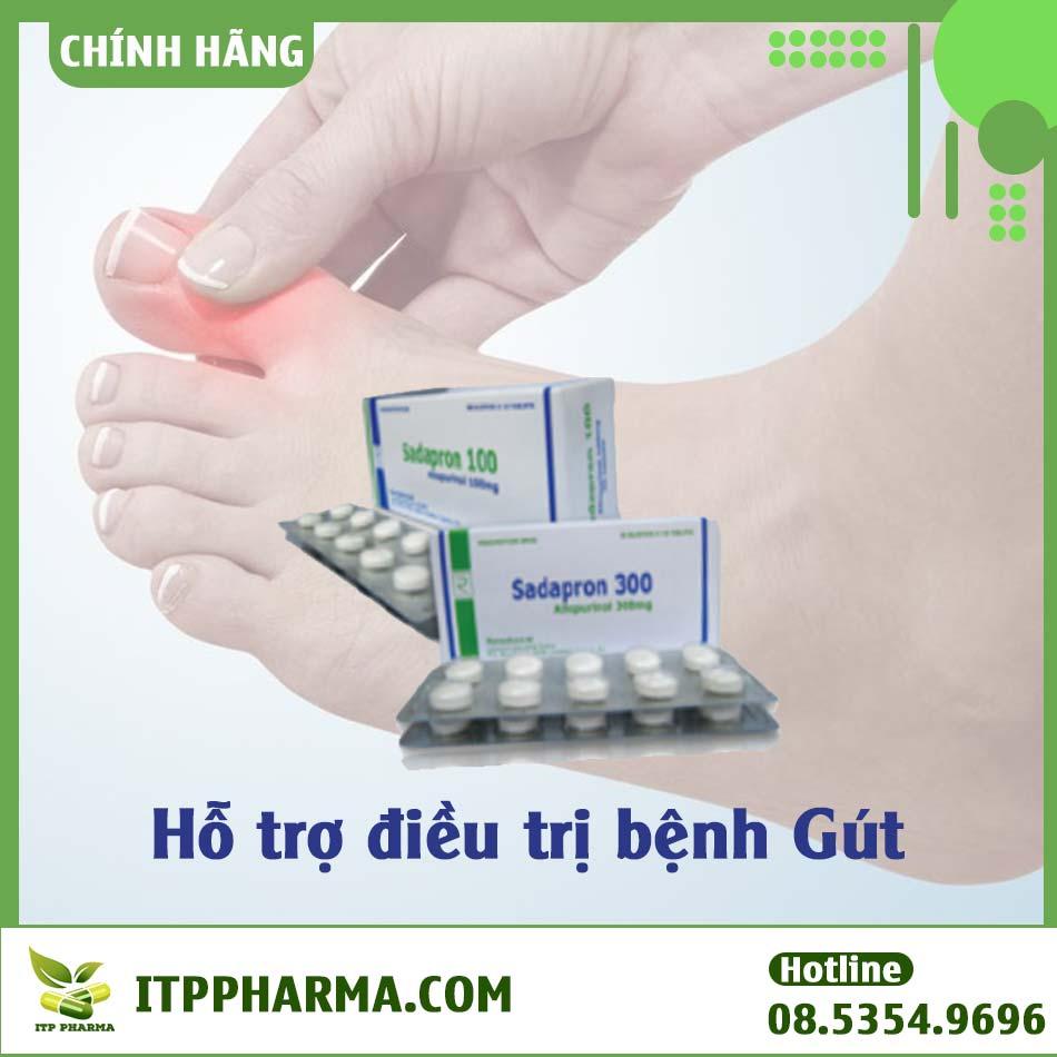Thuốc hỗ trợ điều trị bệnh Gút