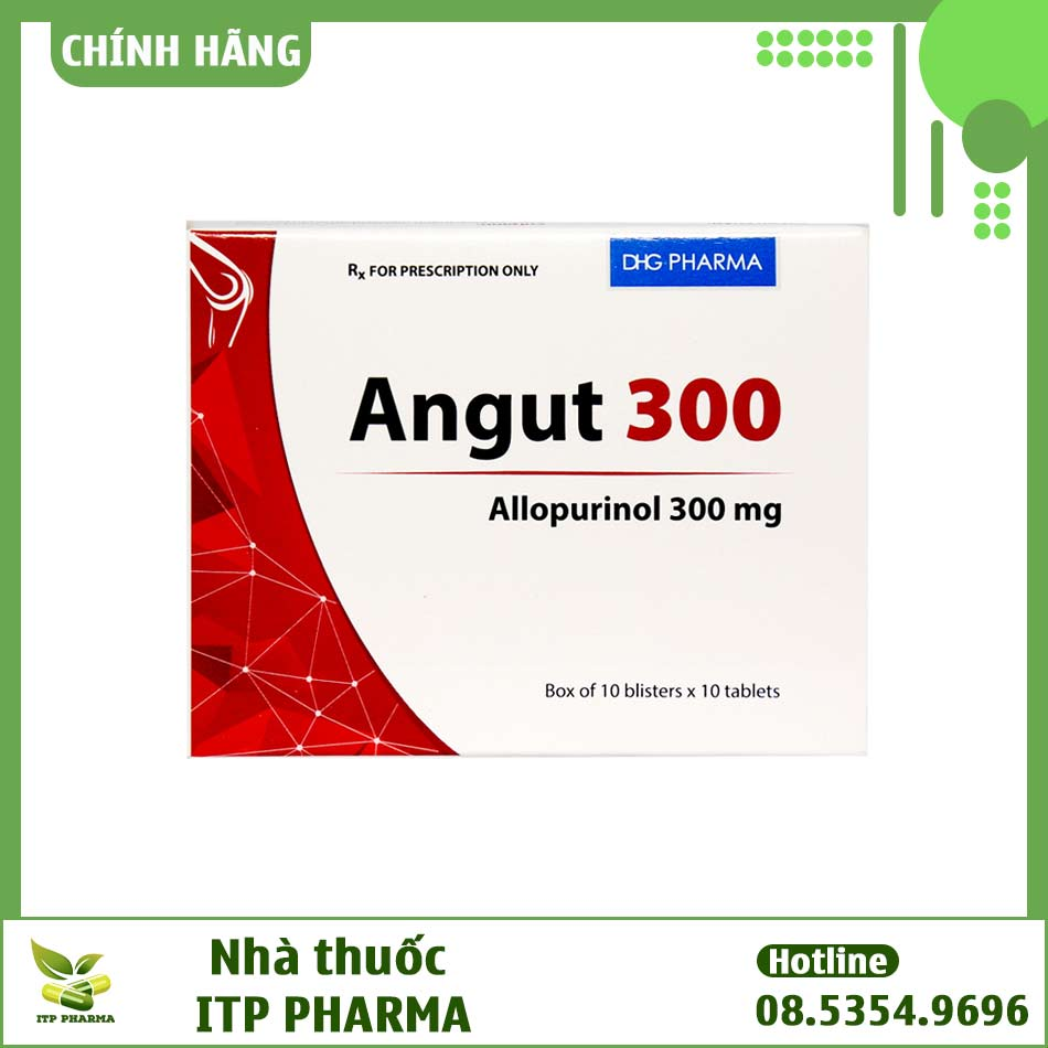 Angut 300 - Thuốc điều trị bệnh Gout hiệu quả