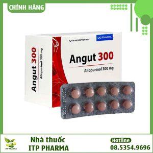 Hình ảnh thuốc Angut 300
