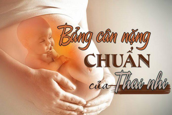 Tham khảo bảng cân nặng chuẩn của thai nhi để thẽo dõi quá trình phát triển của con