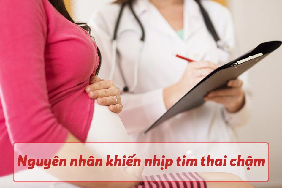 Nguyên nhân khiến nhịp tim thai chậm