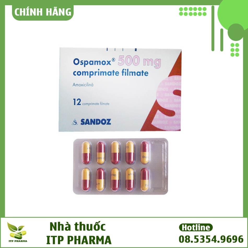 Thuốc Ospamox điều trị nhiễm khuẩn