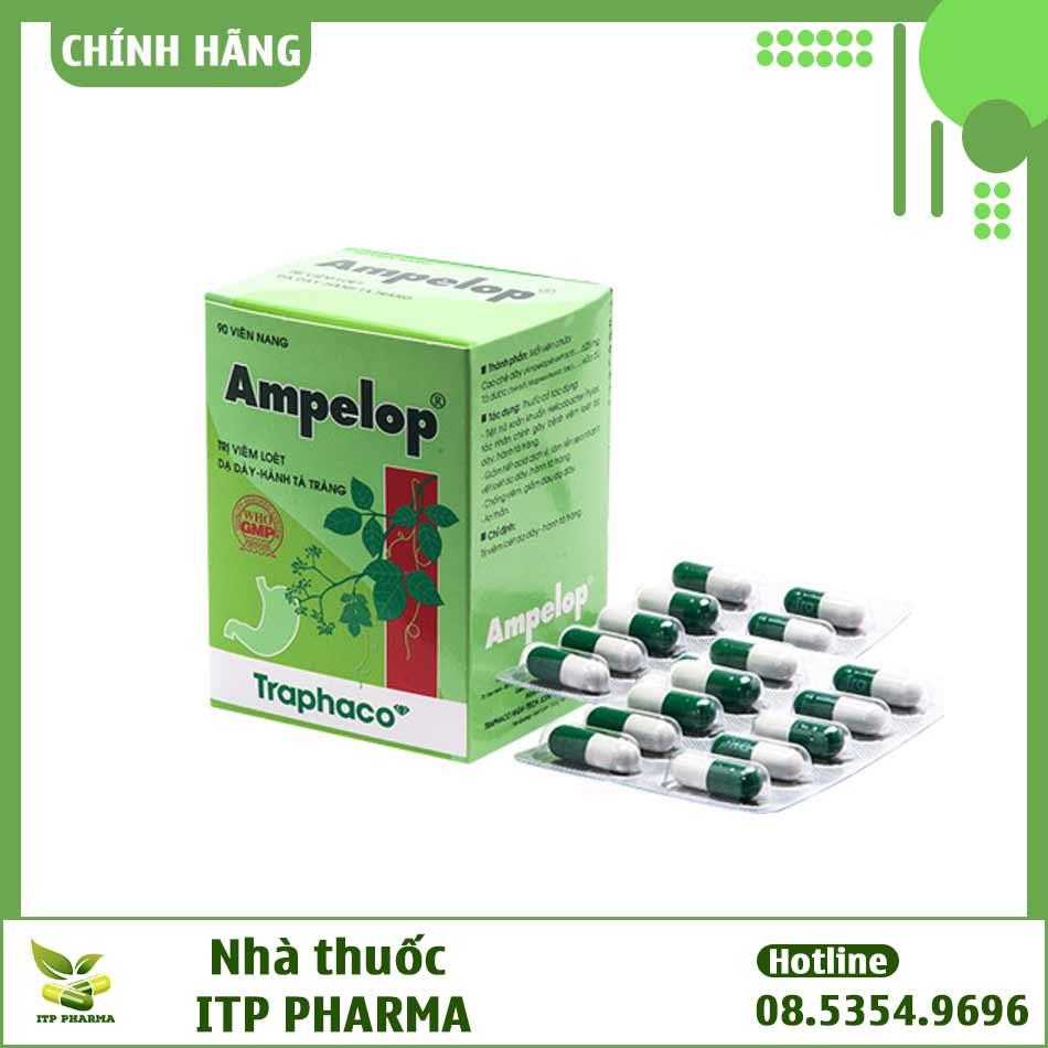 Hình ảnh hộp và vỉ thuốc Ampelop