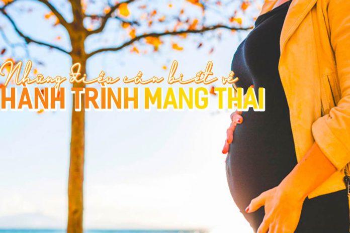 Những điều cần biết về hành trình mang thai